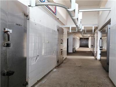 Vanzare cladire cu proiect pentru 5 locuinte aflata in Santana